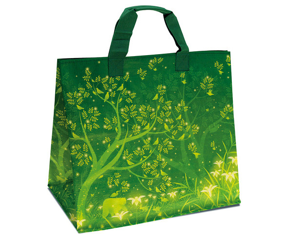 Carrefour bag