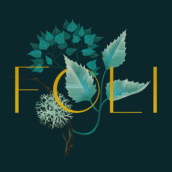 FOLI_D_hp1